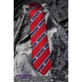 Transformers Narrow Tie - Royal Crest (Autobot)