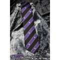 Transformers Narrow Tie - Royal Crest (Decepticon)